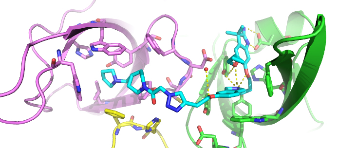33e772870a01 Figure 1  Co-crystal structure of Spin1 (domain 1   purple  domain 2    green  domain 3   yellow) with VinSpinIn (Cyan).