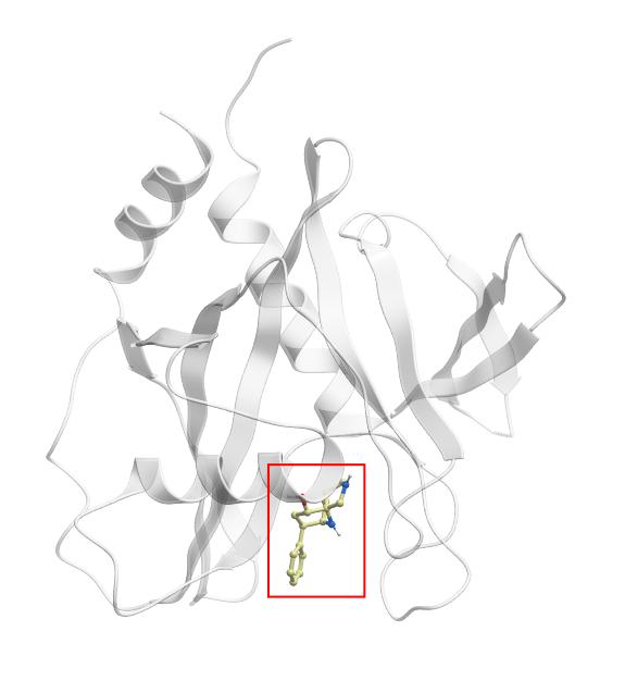 Human Peroxisomal Coenzyme A Diphosphatase Nudt7 Nudt7